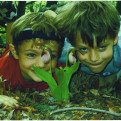 by paul ricker 2005Kids and Plant